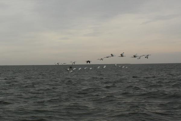 20121114-104811.jpg