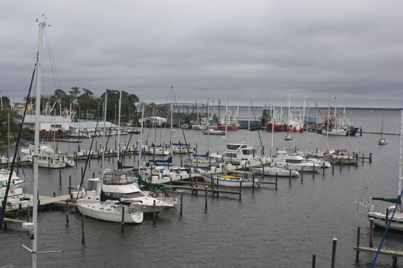 Can you spot Rode Trip at Oriental Harbor Marina?